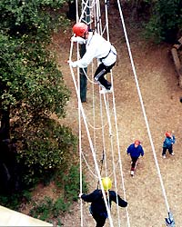 introimg_highropes-climbing.jpg