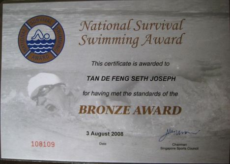 National Survival Swimming Award - Bronze