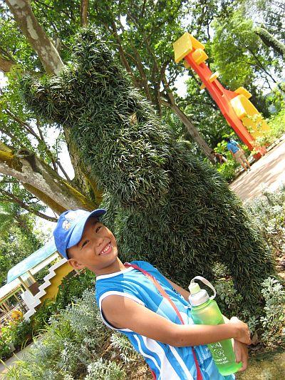 Kidz Garden 2
