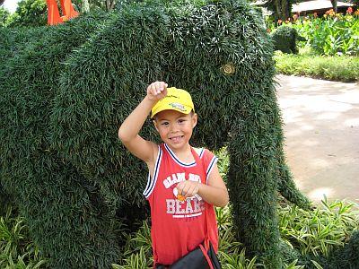 Kidz Garden 3