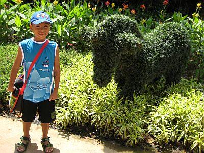 Kidz Garden 6
