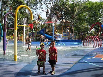 The Rainforest Park Area
