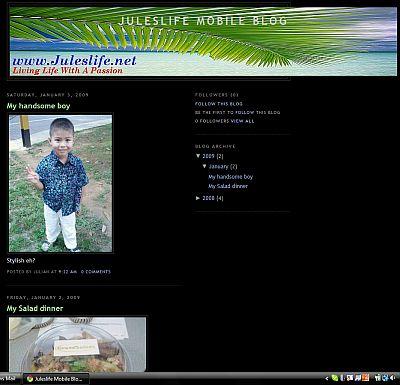 http://juleslifenet.blogspot.com/