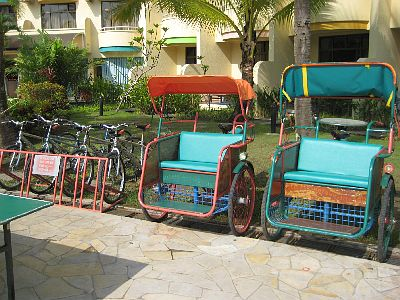Bicycles and Tricycles For Hire